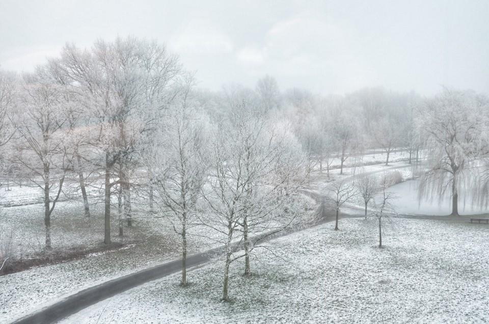 Winter… Still…